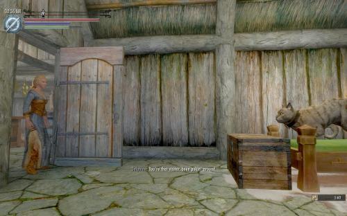 В Skyrim можно сыграть за кота